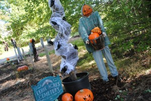 Fall Festival Days @ Chapel Hills Farm and Nursery | Perry Hall | Maryland | United States