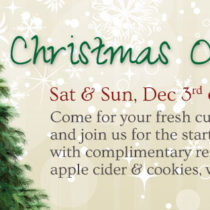 Open House Sat and Sun Dec 3rd and 4th